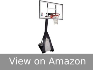 "Spalding NBA ""The Beast"""