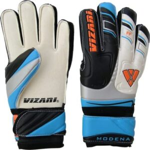 Vizarigoalie gloves
