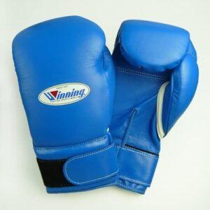blue winning boxing gloves