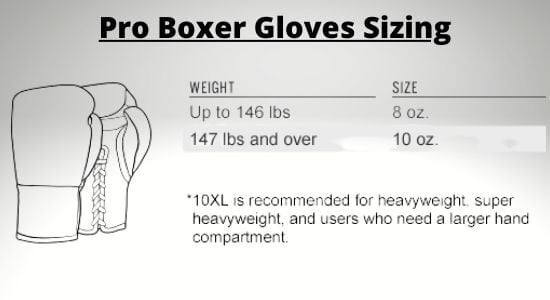 Professional-Boxer-Gloves-Sizing
